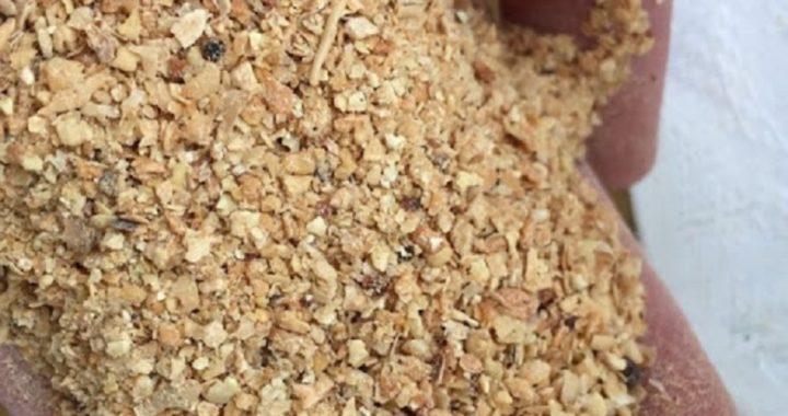 کشف ۷۰۰ تن کنجاله سویا در یک انبار فاقد مجوز در کردکوی